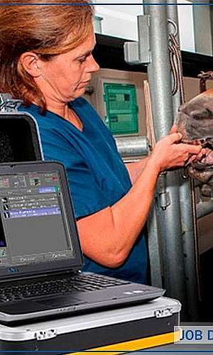 Aparelho de raio x portátil veterinário