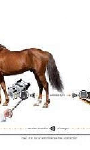 Emissor de rx veterinário